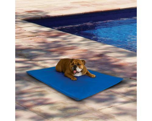 Climsom tapis rafraichissant pour chien - Tapis rafraichissant pour chien ...