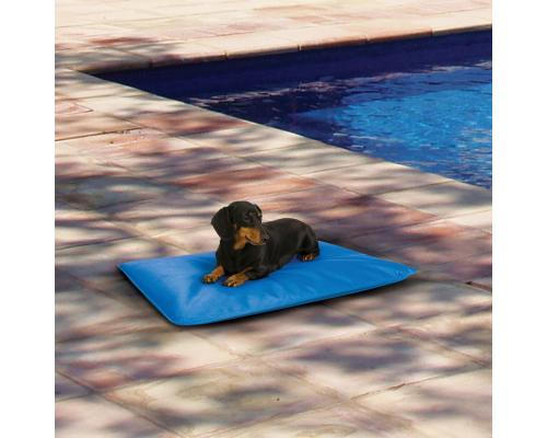 Tapis Rafraichissant Pour Chien Cool Bed Iii Climsom