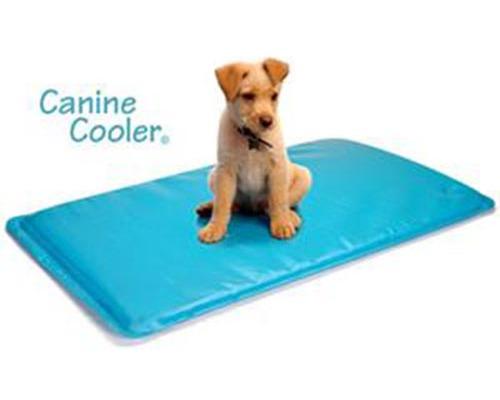 Canine cooler tapis rafraichissant pour chien m moire de forme - Tapis rafraichissant pour chien ...