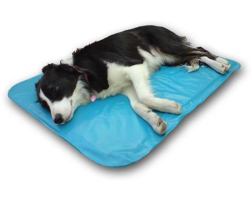 Tapis Pour Chien Rafraichissant Orthopedique Canine Cooler Climsom
