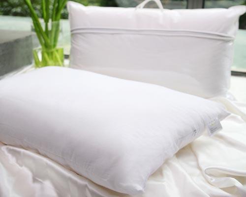 climsom oreiller en soie. Black Bedroom Furniture Sets. Home Design Ideas