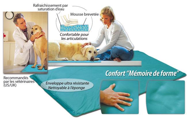 Canine cooler tapis rafraichissant pour chien m moire - Ou trouver mousse pour coussin ...